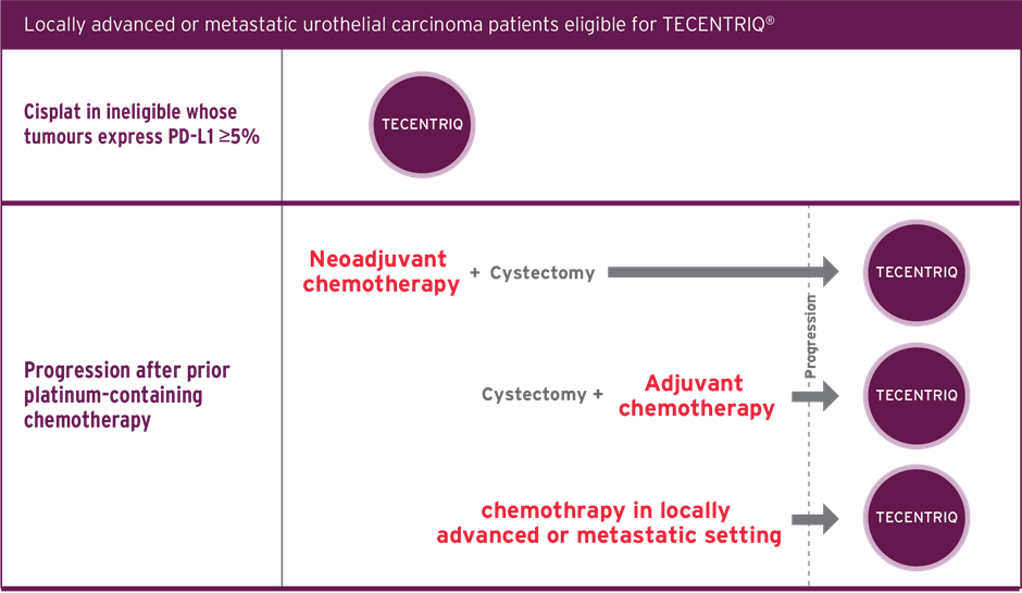 Infographic of TECENTRIQ indications in eligible patients with locally advanced or metastatic UC.